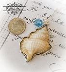 Seashell Sterling silver Pendant Necklace Nature