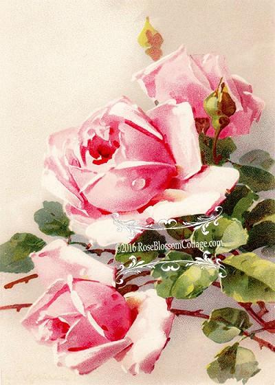 victorian era print three sisters roses downloadable 5x7