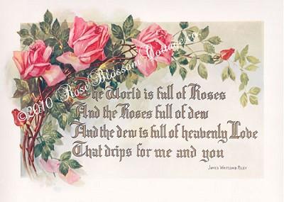 Antique Pink Roses Poem Print 5x7
