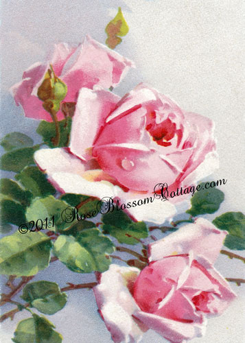 Pink Rose Blues Print 5x7