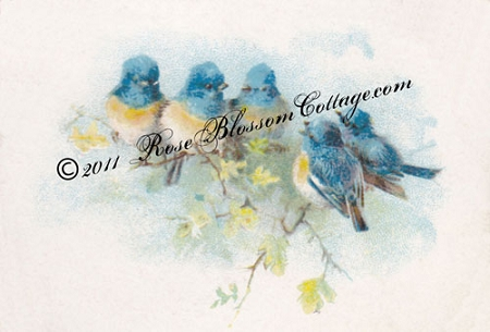 Antique Bluebirds Print