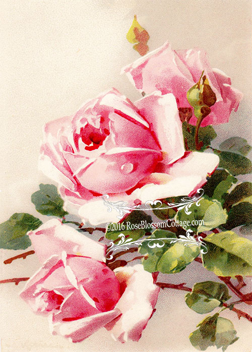 Victorian Era Print Three Sisters Roses Downloadable 5x7