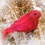 Cardinal Tree Clip Feathered Ornament Memory bird